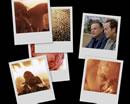 A desktop background collage from Millennium's Sacrament.